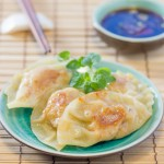 Chicken and Ginger Gyoza
