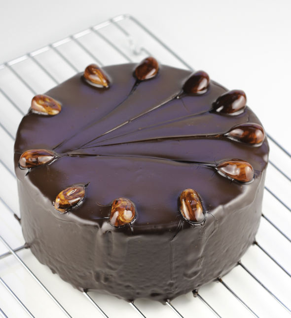 Chocolate Hazelnut Torte – Stasty